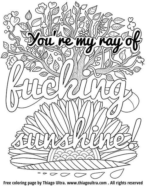 Adult Coloring Book Swear Words Humor Pages