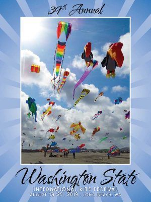 Kite Festival Poster 2019 With Images Kite Festival Posters