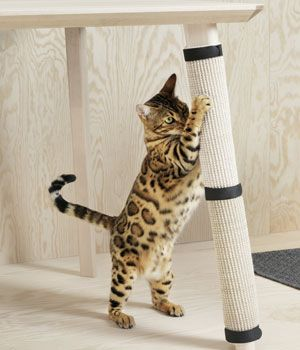Ikea para gatos: muebles ronroneantes | Muebles para gato