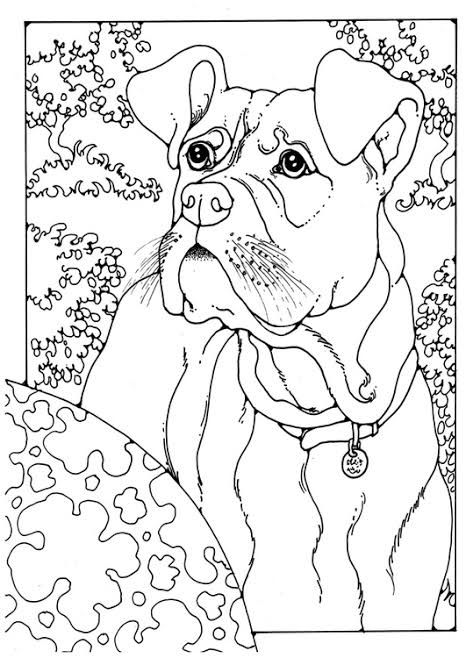 Omi Sengupta I Will Draw Beautiful Coloring Book Page For Kids For 5 On Fiverr Com In 2021 Horse Coloring Pages Coloring Books Dog Coloring Page