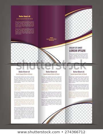 Vector Empty Trifold Brochure Template Print Blank Design