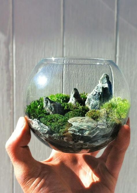 Japanese Garden Terrarium Features A Fisherman Relaxing Atop His River Rock  With A Tiny White Fish On His Line With A Realistic Forest Scene In Theu2026