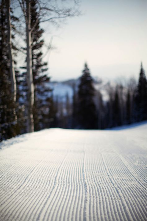 A close look at a perfectly groomed trail at Deer Valley Utah. #photography SkiMag.com REPINNED NOTE: PS We have none of this groomed stuff where we ski!