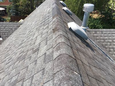 Pin By Virtue Pro On Https Www Virtuepro Com Cleaning Gutters Moss Removal Professional Window Cleaning