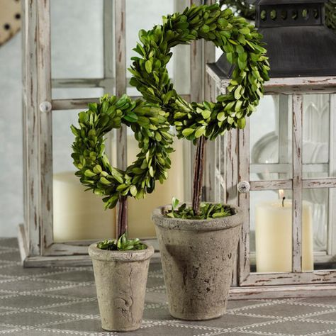 potted wreath boxwood topiary topiary boxwood topiary on interior using artificial boxwood panels with flowers id=22354
