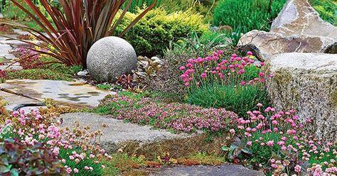 240 Home Garden Ideas In 2021 Plants Garden Perennials