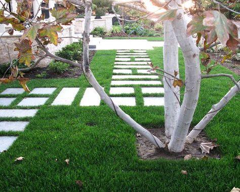 Pelouse Avec Passage Dallé Jardins Allées De Jardin En