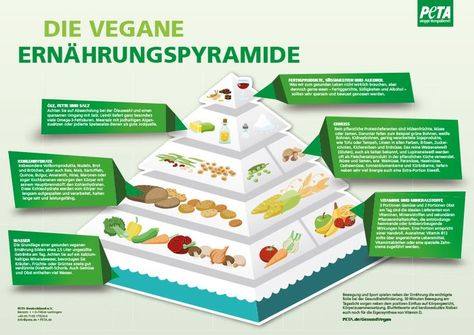 THE 3 MAIN NUTRITIONAL TIPS FOR VEGANISTS - #MAIN #NUTRITIONAL #Tips #VEGANISTS