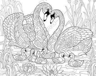 Coloring Page For Adults Digital Coloring Page Owl Etsy Animal Coloring Pages Bird Coloring Pages Coloring Books