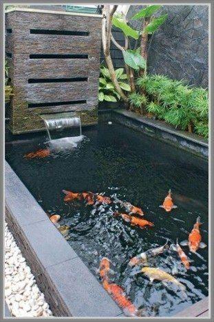 kreasi kolam ikan minimalis - kolama