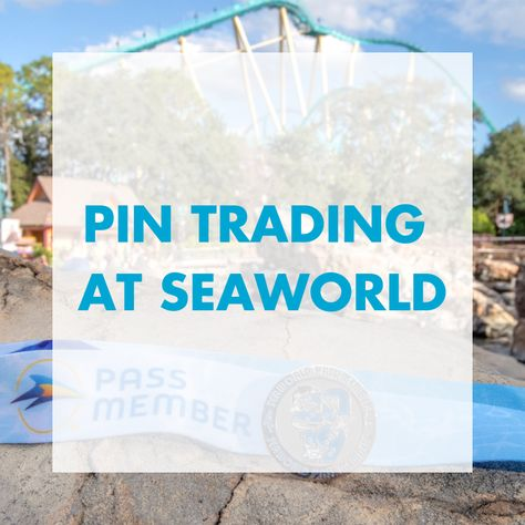 Sea World Collectible Pins Pick from a Giant Assortment! Brand New from Sea World Broaches Limited Editions! From Orlando! Pin Traders