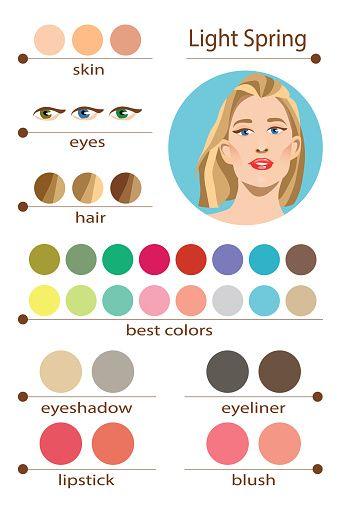 Stock Vector Seasonal Color Analysis Palette For Light Spring Best