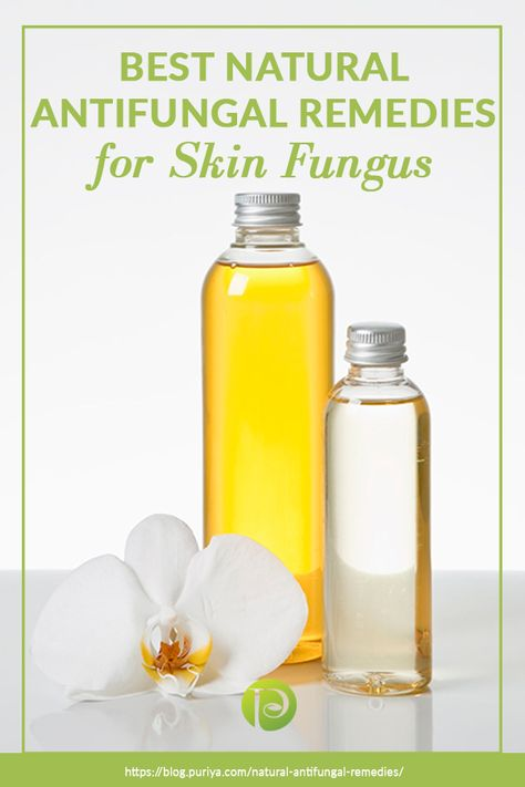 Best Natural Antifungal Remedies For Skin Fungus Skin fungus occurs anywhere on the skin, and natural antifungal remedies are very helpful if you want to treat it at home. Check out these remedies here!
