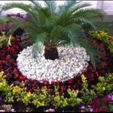 Image Result For Jardines Modernos Con Palmas Front Yard Landscaping Design Rock Garden Garden Design