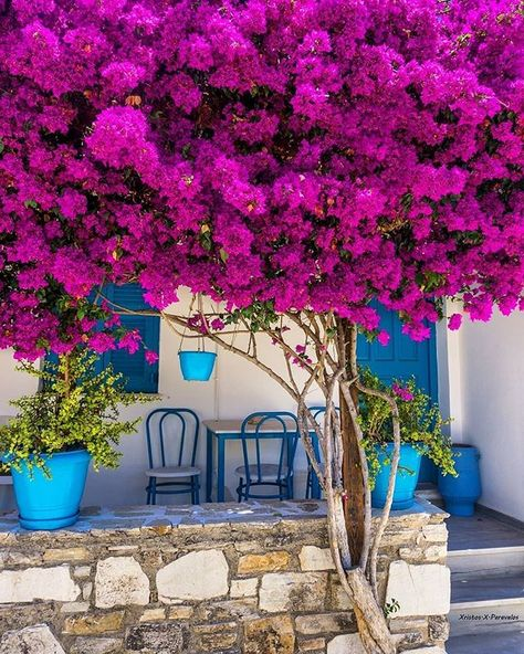 Antiparos Greece by @xristos.x.paravalos  #the_daily_traveller  www.dailytraveller.gr  Follow me on @vsiras & @bestgreekhotels  #athensvoice #ae_greece #insta_greece #greecetravelgr1_ #team_greece #super_greece #kings_greece #roundphot0 #reasonstovisitgreece #greecelover_gr #ig_greece #welovegreece_ #wu_greece #greecestagram #igers_greece #ilovegreece #greece #perfect_greece #great_captures_greece #instalifo #loves_greece #life_greece #instagreece #travel_greece #greecetravelgr #gf_greece #igersgreece #visitgreece #tv_greece