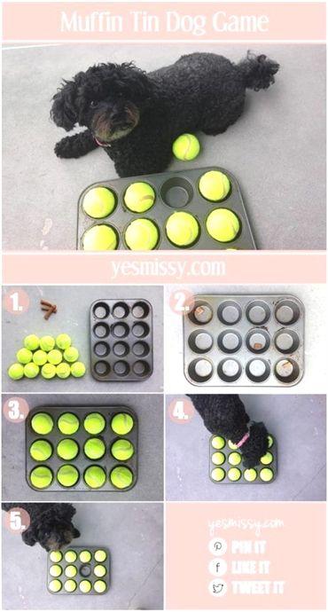 Dog Training Glove Dog Training To Protect Dog Training 53066