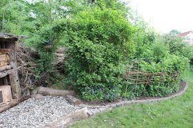 Benjes Hecke Totholz Benjeshecke Totholzhecke Garten Vogel Weidenzaun Anlegen Geholze Einheimisch Lebensraum F Naturgarten Garten Naturnaher Garten