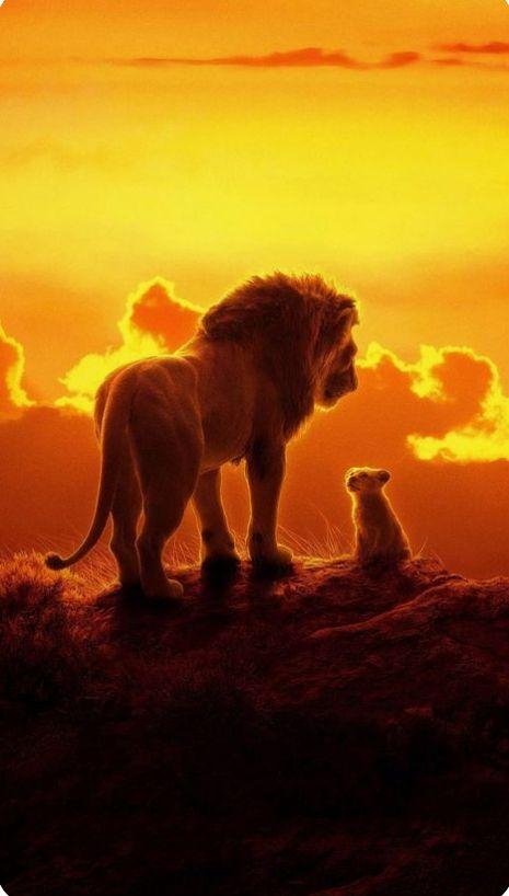Tu Seras Toujours Mon Exemple Papa En 2020 Le Roi Lion Fond D Ecran Dessin Photos Animaux Sauvages