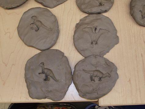 La maternelle de Francesca: Nos fossiles!
