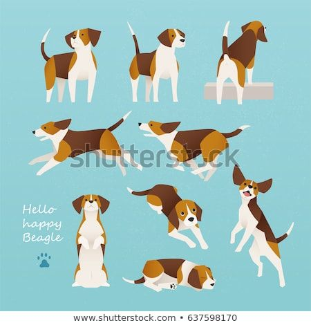 Cute Beagle Dog Lively Actions Vector Illustration Flat Design
