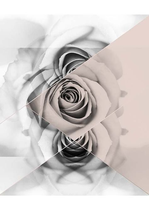 Graphic Rose Poster no grupo Prints / Graphical na Desenio AB (2790)