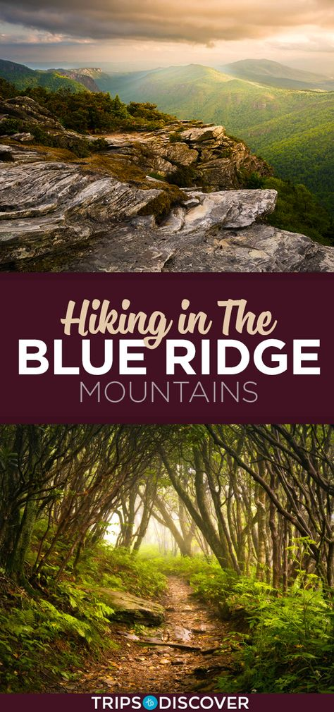 10 Gorgeous Hikes Through North Carolina's Blue Ridge Mountains - - Why wouldn't you want to go on an adventure through one of the most beautiful ranges on the East Coast. Ashville North Carolina, North Carolina Hiking, North Carolina Mountains, Maggie Valley North Carolina, Blue Ridge Mountains, Blue Ridge Parkway, Mountain Vacations, Mountain Hiking, Appalachian Mountains