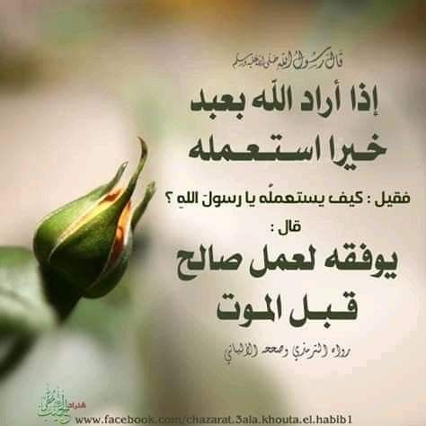 Pin By Dr Zohair Bahumdain On إسلاميات Ahadith Islam Learning