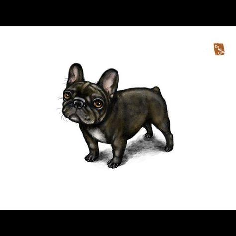 Pin Ot Polzovatelya Tatyana Naryshkina Na Doske French Bulldog