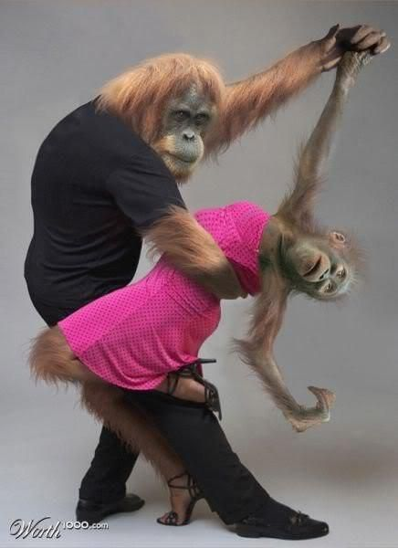 So you think YOU can dance?!! to monkeys as fiction and