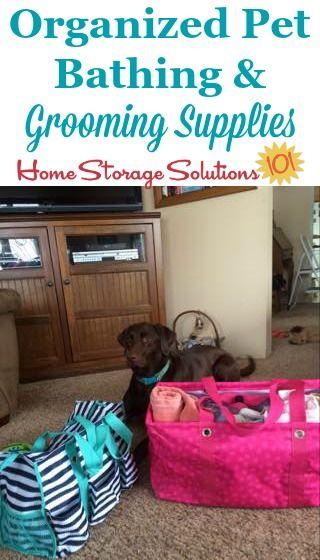 Pet Organization Ideas Tips Pet Organization Pets Dog Supplies