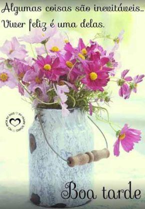 Pin De Chirlei Em Boa Tarde Flores Cosmos Flores Bonitas Buque
