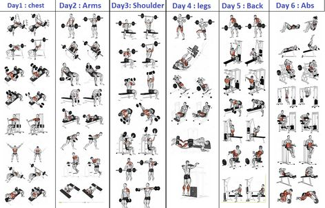 Chest Workout Day Routine Kayaworkoutco workout plans at the gym - Workout Plans 6 Day Workout Routine, Workout Schedule For Men, 5 Day Workout Plan, 5 Day Workouts, Gym Workout Chart, Work Out Routines Gym, Weekly Workout Plans, Workout Plan For Beginners, Workout Days