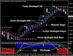 Forex Crocodile System Forex Trading System Forex Trading