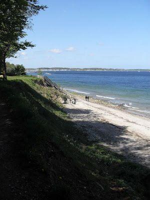 Kiel Insights: Falckensteiner Strand