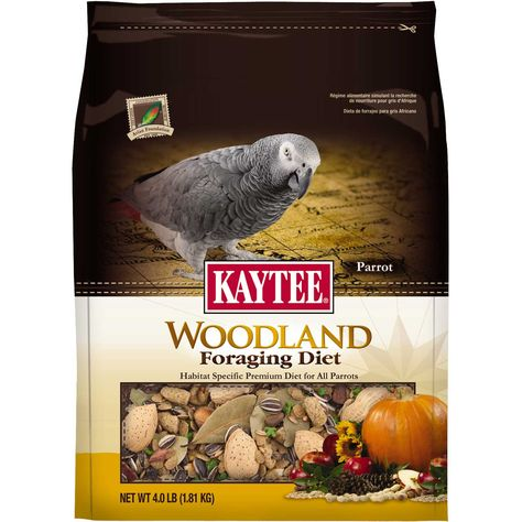 African grey diet in the wild