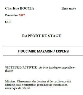 Conclusion rapport de stage bts pdf