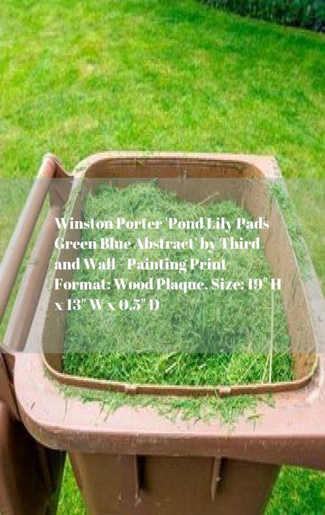 c1007c98753716bc57fbdca46e7c6795 - How To Get Rid Of Moss In A Farm Pond
