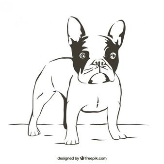 Bulldog Kostenlose Vektoren Fotos Und Psd Dateien Bulldog French Bulldog Vector Stock Illustration French Bulldog Pug Dog Drawing Dog Breed Decal Bulldog Art