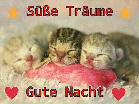 - Süße Träume, gute Nacht! ,  #Gute #Nacht #Süße #Träume