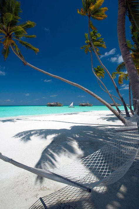 Gili Lankanfushi, Maldives.
