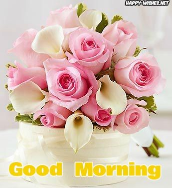 50 Good Morning Wishes With Rose Picture With Images