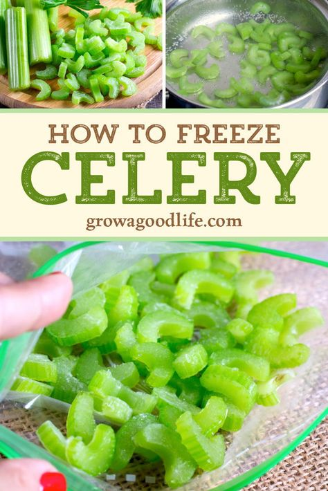 How to Freeze Celery - Freezing celery is a simple way to reduce food waste in the kitchen. With a little effort, you can - How To Freeze Celery, Freezing Celery, Freezing Vegetables, Fruits And Veggies, Can You Freeze Potatoes, Frozen Vegetables, Celery Recipes, Frozen Meals, Canning Recipes