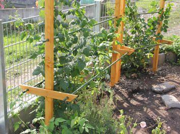 Rankhilfe Pergola Fur Himbeeren Und Brombeeren Garten Garten Anpflanzen Garten Hochbeet