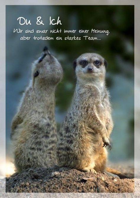 Postkarte Liebe Sprüche Freundschaft; Du und Ich. Wir sind zwar nicht immer einer Meinung #Women #Fashion