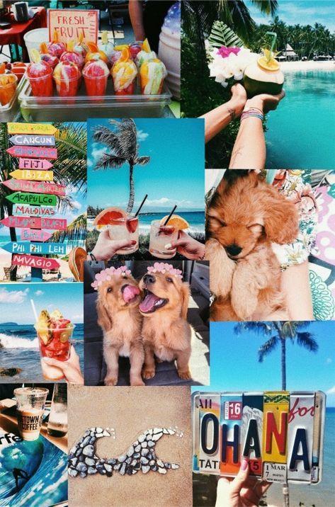 Vsco Summer Vibes Delizabethh Collage Background Summer