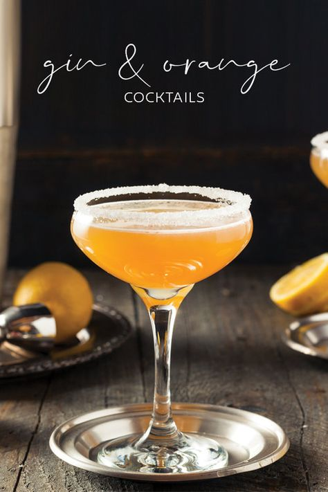 7 of the best gin and orange cocktail recipes Craft Gin Club The UK s No 1 gin club Orange Juice Cocktails, Cranberry Juice, Fun Cocktails, Orange Cocktail, Gin Lemon Cocktail, Simple Gin Cocktails, Triple Sec Cocktails, Classic Cocktails, Root Beer
