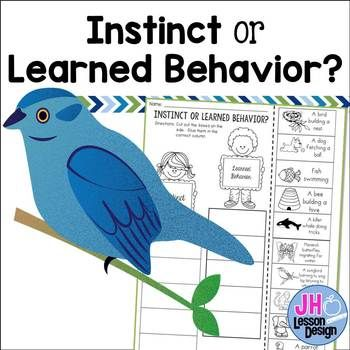 Instinct Or Learned Behavior This Activity Will Ask Your Students
