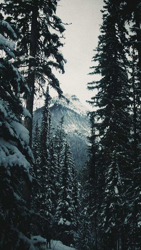 13 x Winter Landscapes iPhone Wallpaper Collection - 13 x Winter Landscapes iPhone Wallpapers by Preppy Wallpapers -