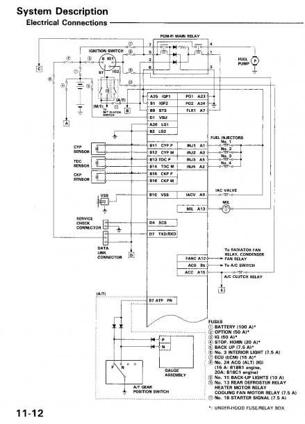 1995 Honda Accord Alternator Wiring Wiring Diagram Teach Teach Lechicchedimammavale It