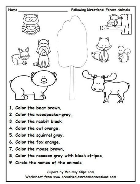 Following Directions Is Fun With This Delightful Forest Animal In 2020 Kindergarten Worksheets Animal Worksheets Following Directions Activities